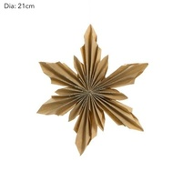 Paper Star Light Coloured 21 cm