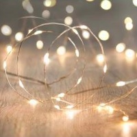 Twinkle String Lights Silver 300CM 30 Seed Lights