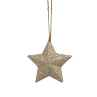 Champagne Bling Xmas Star