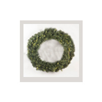 50 cm Green Wreath